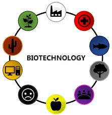 Biotechnology and its branches